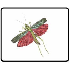 Grasshopper Insect Animal Isolated Double Sided Fleece Blanket (Medium)