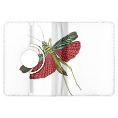 Grasshopper Insect Animal Isolated Kindle Fire Hdx Flip 360 Case