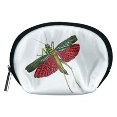 Grasshopper Insect Animal Isolated Accessory Pouches (Medium)