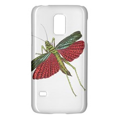 Grasshopper Insect Animal Isolated Galaxy S5 Mini