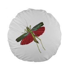 Grasshopper Insect Animal Isolated Standard 15  Premium Flano Round Cushions