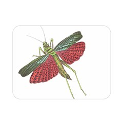 Grasshopper Insect Animal Isolated Double Sided Flano Blanket (Mini)