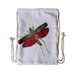 Grasshopper Insect Animal Isolated Drawstring Bag (Small)