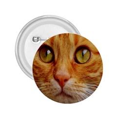 Cat Red Cute Mackerel Tiger Sweet 2.25  Buttons