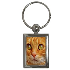Cat Red Cute Mackerel Tiger Sweet Key Chains (Rectangle)