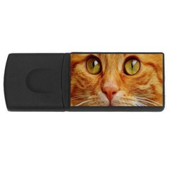 Cat Red Cute Mackerel Tiger Sweet USB Flash Drive Rectangular (1 GB)