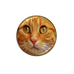 Cat Red Cute Mackerel Tiger Sweet Hat Clip Ball Marker