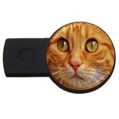 Cat Red Cute Mackerel Tiger Sweet USB Flash Drive Round (4 GB)