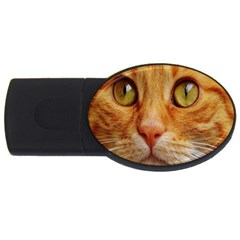 Cat Red Cute Mackerel Tiger Sweet USB Flash Drive Oval (4 GB)