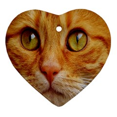 Cat Red Cute Mackerel Tiger Sweet Heart Ornament (Two Sides)
