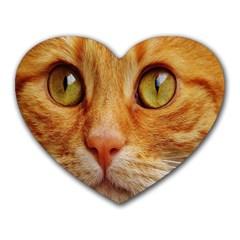 Cat Red Cute Mackerel Tiger Sweet Heart Mousepads