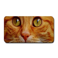 Cat Red Cute Mackerel Tiger Sweet Medium Bar Mats