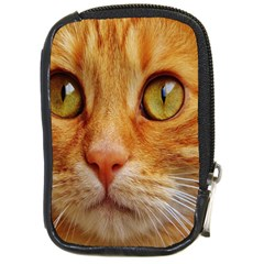 Cat Red Cute Mackerel Tiger Sweet Compact Camera Cases