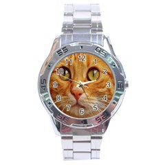 Cat Red Cute Mackerel Tiger Sweet Stainless Steel Analogue Watch