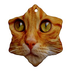 Cat Red Cute Mackerel Tiger Sweet Snowflake Ornament (Two Sides)