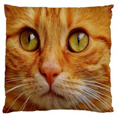 Cat Red Cute Mackerel Tiger Sweet Large Cushion Case (One Side)