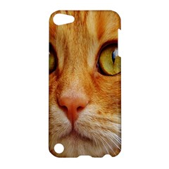 Cat Red Cute Mackerel Tiger Sweet Apple iPod Touch 5 Hardshell Case