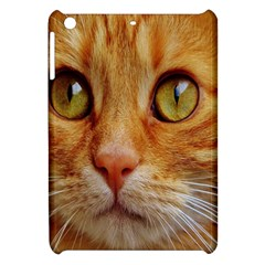 Cat Red Cute Mackerel Tiger Sweet Apple iPad Mini Hardshell Case
