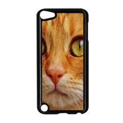 Cat Red Cute Mackerel Tiger Sweet Apple iPod Touch 5 Case (Black)
