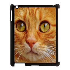 Cat Red Cute Mackerel Tiger Sweet Apple iPad 3/4 Case (Black)