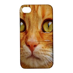 Cat Red Cute Mackerel Tiger Sweet Apple iPhone 4/4S Hardshell Case with Stand