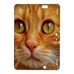 Cat Red Cute Mackerel Tiger Sweet Kindle Fire HDX 8.9  Hardshell Case