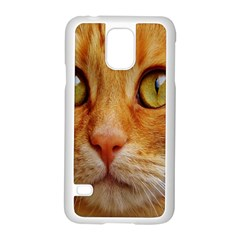 Cat Red Cute Mackerel Tiger Sweet Samsung Galaxy S5 Case (White)