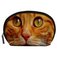 Cat Red Cute Mackerel Tiger Sweet Accessory Pouches (Large)