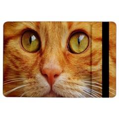 Cat Red Cute Mackerel Tiger Sweet iPad Air 2 Flip