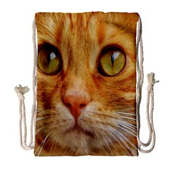 Cat Red Cute Mackerel Tiger Sweet Drawstring Bag (Large)