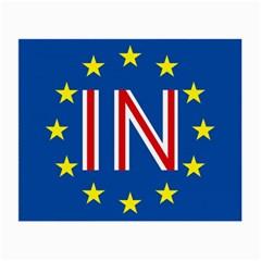 Britain Eu Remain Small Glasses Cloth (2-Side)