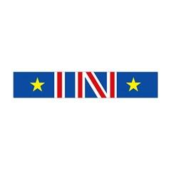 Britain Eu Remain Flano Scarf (mini)
