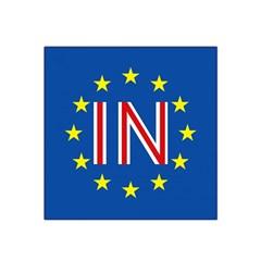 Britain Eu Remain Satin Bandana Scarf