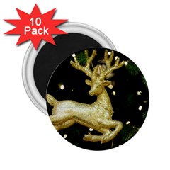 December Christmas Cologne 2.25  Magnets (10 pack)