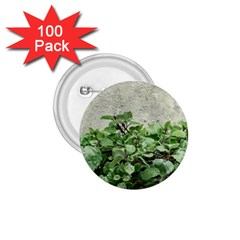 Plants Against Concrete Wall Background 1.75  Buttons (100 pack)
