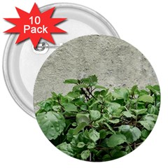 Plants Against Concrete Wall Background 3  Buttons (10 pack)