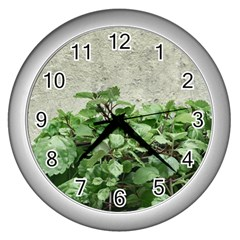 Plants Against Concrete Wall Background Wall Clocks (Silver)