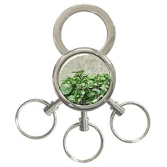 Plants Against Concrete Wall Background 3-Ring Key Chains
