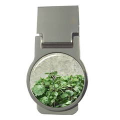 Plants Against Concrete Wall Background Money Clips (Round)