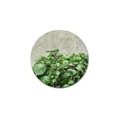 Plants Against Concrete Wall Background Golf Ball Marker (4 pack)