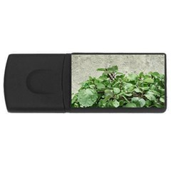 Plants Against Concrete Wall Background USB Flash Drive Rectangular (2 GB)