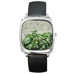 Plants Against Concrete Wall Background Square Metal Watch