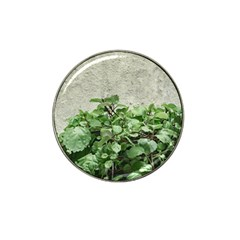 Plants Against Concrete Wall Background Hat Clip Ball Marker