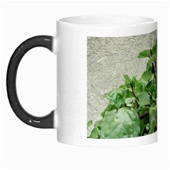 Plants Against Concrete Wall Background Morph Mugs
