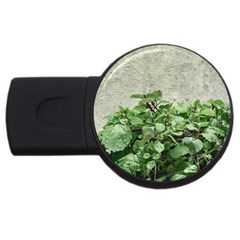 Plants Against Concrete Wall Background USB Flash Drive Round (4 GB)