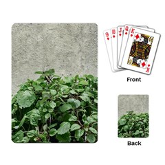 Plants Against Concrete Wall Background Playing Card