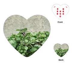 Plants Against Concrete Wall Background Playing Cards (Heart)