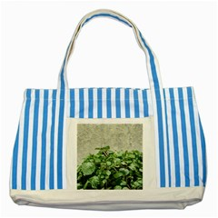 Plants Against Concrete Wall Background Striped Blue Tote Bag