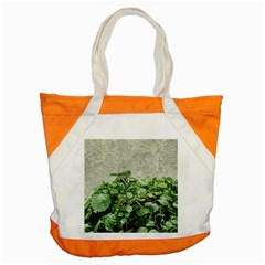 Plants Against Concrete Wall Background Accent Tote Bag
