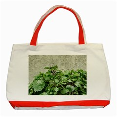 Plants Against Concrete Wall Background Classic Tote Bag (Red)